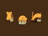 Eat  Sleep  Prey - Cute Cats
