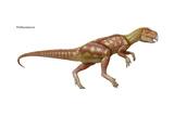 Psittacosaurus  Dinosaurs