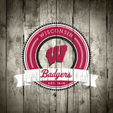 Wisconsin Badgers Logo on Wood