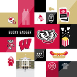 Wisonsin Badgers Collage