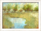 Guild Pond 2