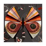 Nature Fan  Moth Color