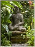 Bali, Ubud, a Statue of buddha Sits Serenely in Gardens Photo encadrée par Niels Van Gijn