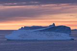 Penguins Float on an Iceberg under the Midnight Sun Just Outside Deception Island