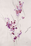 Delicate Blossoms I