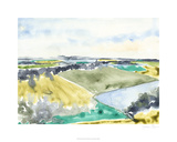 Watercolor Field II