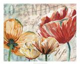 Poppy Layers II