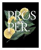 Prosper & Thrive I