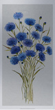 Cornflower Patch I