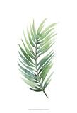 Untethered Palm I Reproduction d'art par Grace Popp