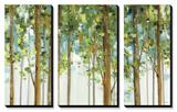 Forest Study I Crop Tableau multi toiles par Lisa Audit