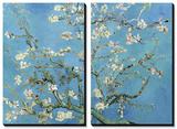 Branches d'amandier en fleurs, Saint-Rémy, 1890 Tableau multi toiles par Vincent Van Gogh