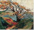 tree carr