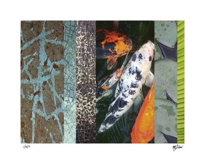 Koi Pond II - Giclee Print