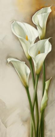 Callas Gracieux II Art Print