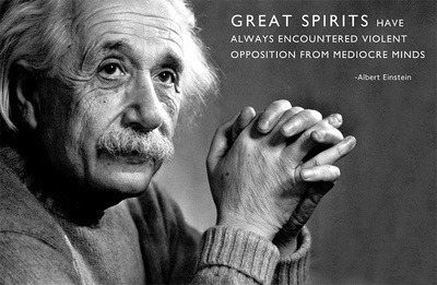 Albert Einstein Great Minds Motivational Poster Poster