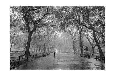 Central Park Poet's Walk - New York City Landmarks Photographic Print
