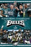 Super Bowl LII - Celebration NFL - Helmets 17 nfl
