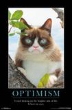 GRUMPY CAT - BRIGHTER SIDE Grumpy Cat Mona Lisa Grumpy Cat Mugshot Humor Poster Grumpy Cat - Shut Up Cats Grumpy Cat- Go Away Summer Cats Grumpy Cat- Happy Face grumpy cat
