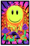 Have a Nice Trip Flocked Blacklight Poster We're All Mad Here Mystic Wizard Flocked Blacklight Poster Peace Love and Happiness Take Me To Your Dealer College Blacklight Poster Asian Dragon Flocked Blacklight Poster Alien Visitor Blacklight Responsive Poster Yellow Submarine Moonlit Pirate Ghost Ship Blacklight Poster Art Print Magic Valley Vertigo Drop Opticz Treehouse Blacklight Poster Jimi Hendrix - Guitar Solo Mushroom Man