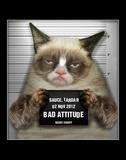 Grumpy Cat Mugshot Humor Poster Cats Grumpy Cat- Go Away Summer Cats grumpy cat