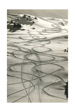 Ski Trails in Snow A View of the Swiss Alps from Col Du Chardonnet, Mount Blanc Region Denali National Park Gilding Lauterbrunnen and Staubbach Falls, Jungfrau Region, Swiss Alps, Switzerland, Europe Aspen and Douglas Fir, Manti-Lasal National Forest, La Sal Mountains, Utah, USA Central Park in Winter