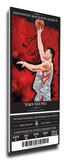Yao Ming Artist Series Mega Ticket - Houston Rockets 2006 - 2007 Rockets Team Composite Lebron James and Yao Ming - '04 All-Star Game The Year Of The Yao Yao Ming