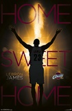 Cleveland Cavaliers - Lebron James 14 LeBron James Collage Miami Heat NBA Sports Poster Cleveland Cavaliers - Lebron James Cleveland Cavaliers v Brooklyn Nets Denver Nuggets v Cleveland Cavaliers 2016 NBA Finals - Game Two Lebron James- Only Way You Succeed