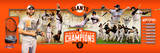 "San Francisco Giants 2014 World Series Champions Photoramic - 12"" x 36"" MLB - Superstars 15 San Francisco Giants - Logo 17 Candlestick Park - San Francisco, California AT&T Park - San Francisco, California San Francisco Giants - 2014 World Series Champions SF Dynasty San Francisco Giants Logo Sports Poster San Francisco Giants - Champions"