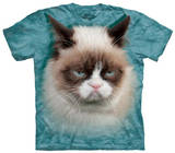 Youth: Grumpy Cat Grumpy Cat - I Had Fun Once It Was Awful Juniors Tank Top: Grumpy Cat- Clover Snack Grumpy Cat - Shut Up Grumpy Cat - No Grumpy Cat Mugshot Humor Poster Cats Grumpy Cat- Go Away Grumpy Cat- Happy Face Summer Cats grumpy cat