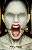 American Horror Story- Key Freak Show 2 Freak Show 3 American Horror Story- Hotel American Horror Story- Graphic Seasons American Horror Story- Twisty Freak Show Ticket