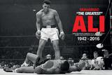 Muhammad Ali- Liston Knockdown Commemorative Muhammad Ali - Float like a Butterfly Muhammad Ali Muhammad Ali Muhammad Ali Muhammad Ali- Gym Muhammad Ali: Gloves muhammad ali