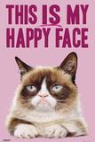Grumpy Cat- Happy Face Grumpy Cat- Go Away Grumpy Cat - 2018 Calendar Grumpy Cat Mugshot Humor Poster Summer Cats grumpy cat