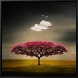 Le nuage de la méduse Tableau sur toile encadré par Philippe Sainte-Laudy