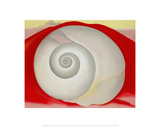 White Shell with Red  1938
