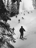 View of People Skiing at Steven's Pass