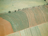 Aerial of Cultivated Farmland in Brazil