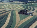 Neat  Swirling Furrows  Contour Plowed across Gently Rolling Fields of Southwestern Wisconsin