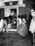 People Bringing in Horse at Dwight D Eisenhower's Inauguration Party