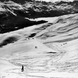 Ski Tracks on Alpine Slopes of Winter Resort