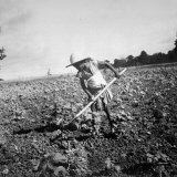 Child of Black Tenant Farmer Family Using Hoe While Working in Cotton Field