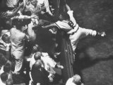Red Sox Player Sammy White Reaching into Grandstands for Foul Ball Against Chicago White Sox