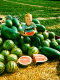 Seedless Watermelons at Purdue University