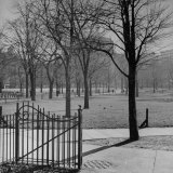 View of the Boston Commons