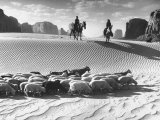 Native American Indians Herding their Sheep Through Desert