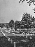 The Sun Shining Down on the Arlington Cemetery