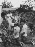 Father Thomas Mccullough Holding Religious Service for Migrant Mexican Farm Laborers in a Work Camp