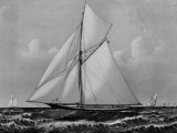 Photograph of Sketch of the Thistle  the Losing Scottish Entry in Race for America's Cup in 1887