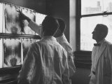 Technicans Examing X-Rays of Bowery Men at Francis Delafield Hospital