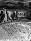 Tasters Testing Whiskey at Jack Daniels Distillery